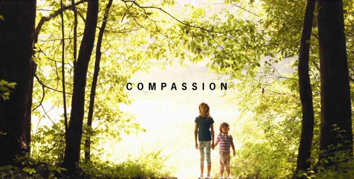 Compassion in a Divisive Culture